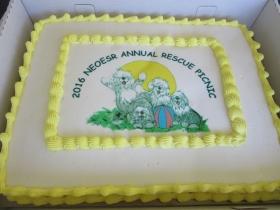 2016 NEOESR Annual Rescue Picnic cake