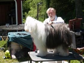 Sandy Woodard grooming demo