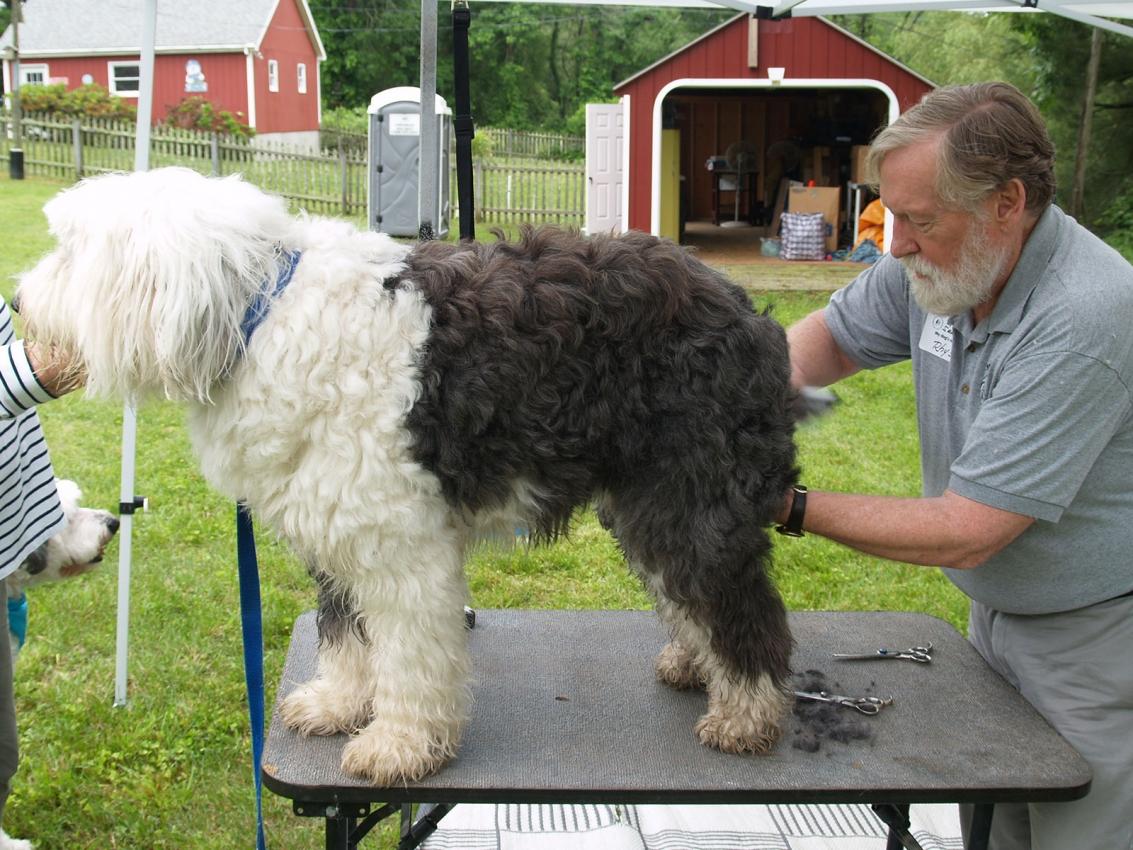 OES Takin getting groomed by Sandy Woodard
