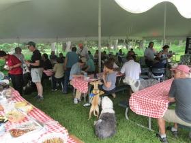 picnic tent-2
