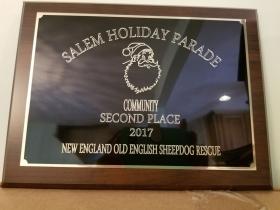 Community award-2nd place