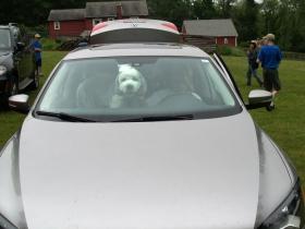 Need help driving Mom?