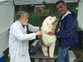 Sandy Woodard grooming OES Macy.