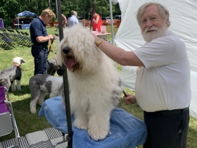 Sandy Woodard grooming a dog