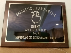 Community award-2nd place