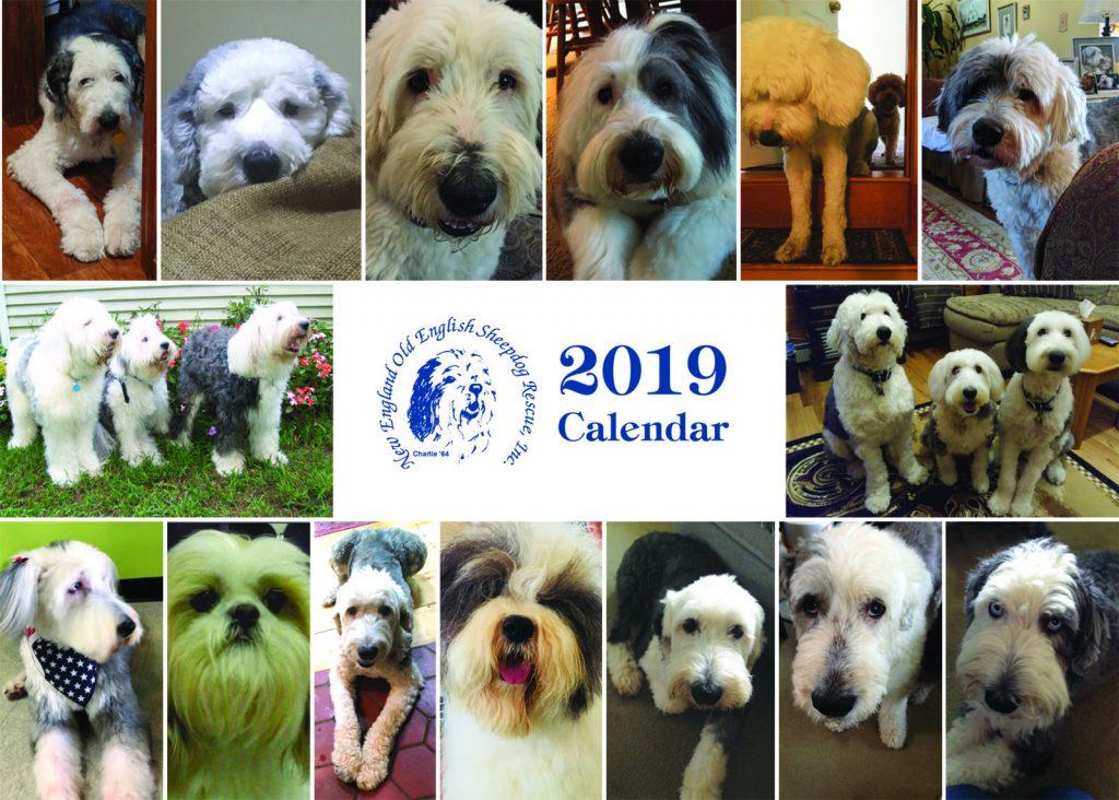 New England Old English Sheepdog Rescue 2019 Calendar