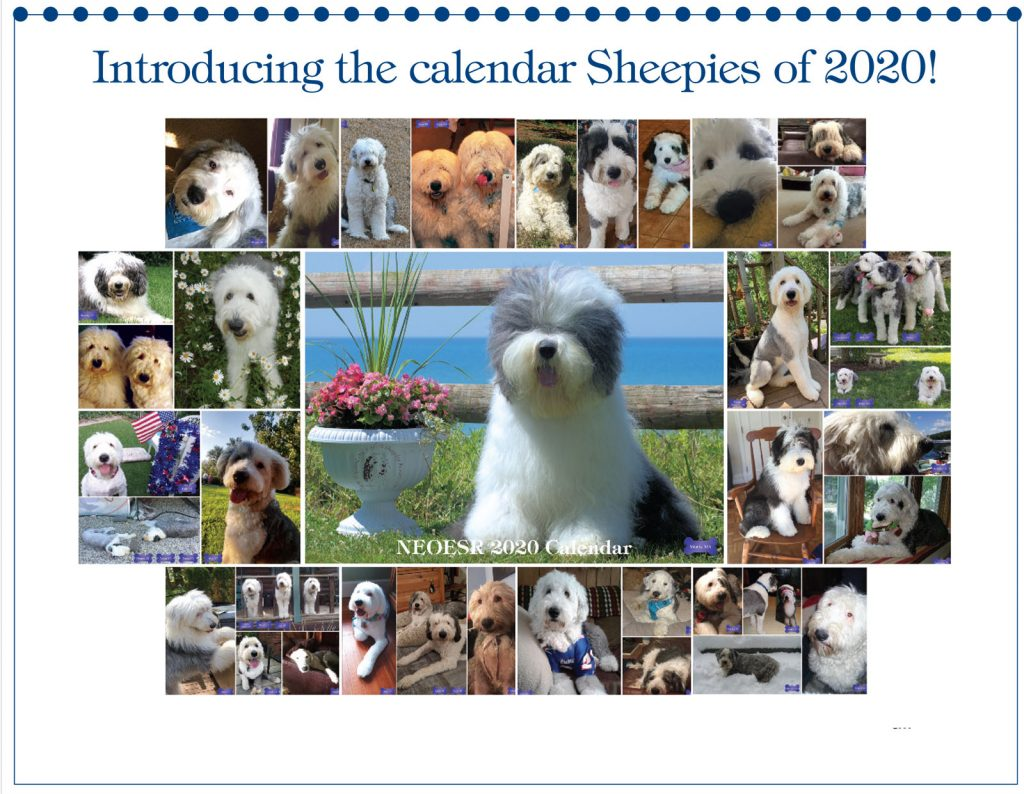 New England Old English Sheepdog Rescue 2020 Calendar