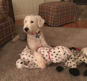 George with his toy